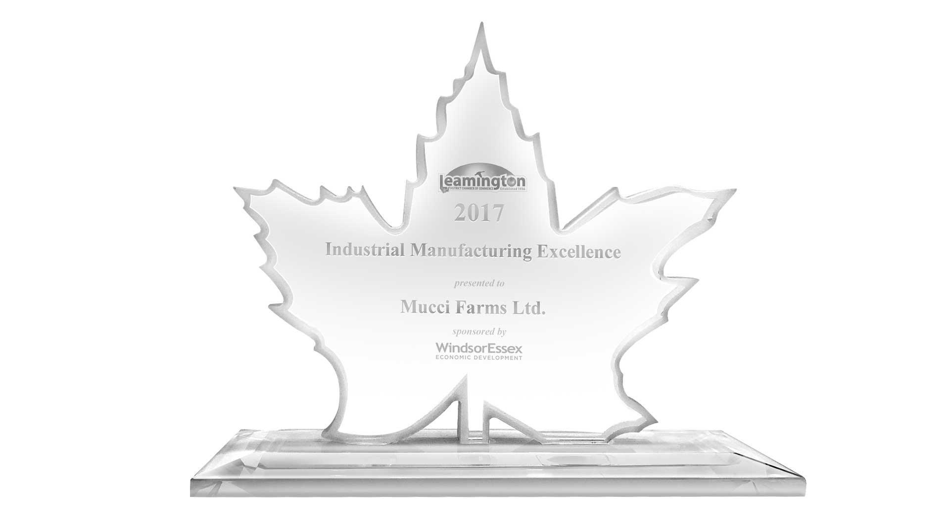 leamington business excellence award header image