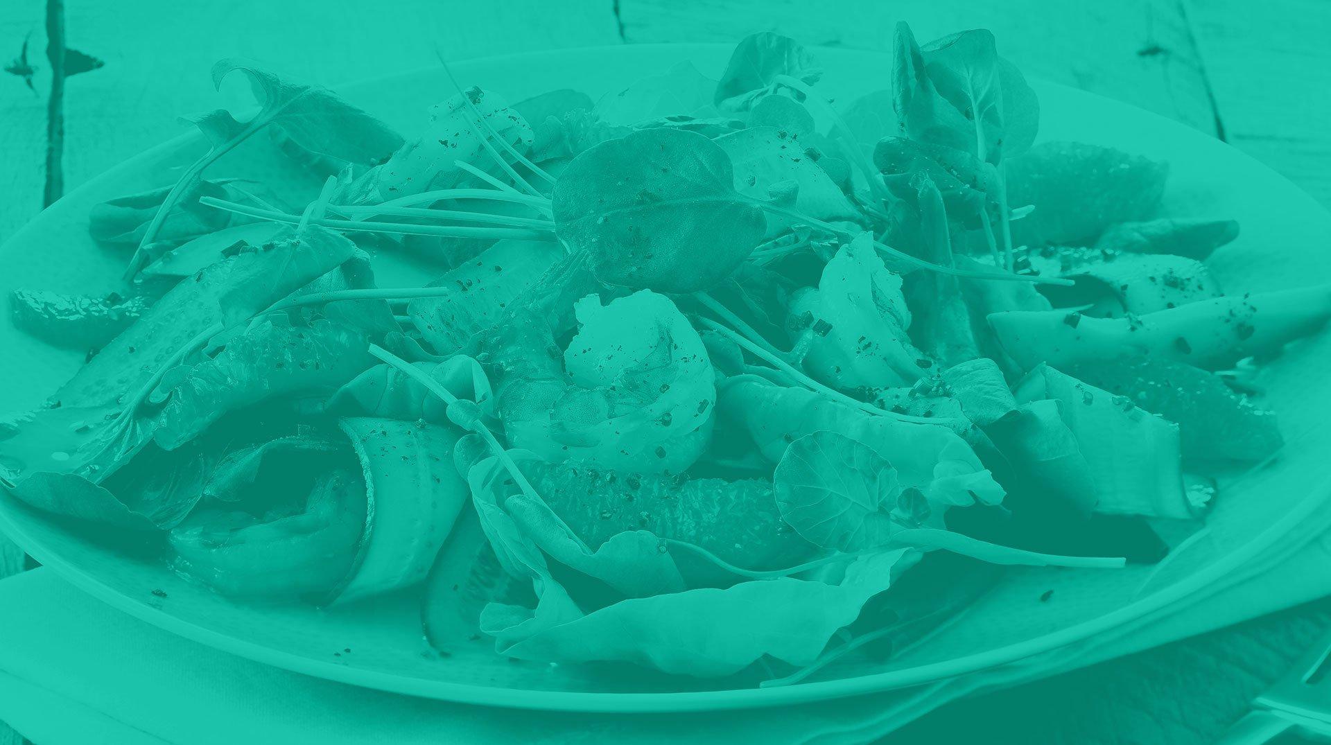 herbs header image