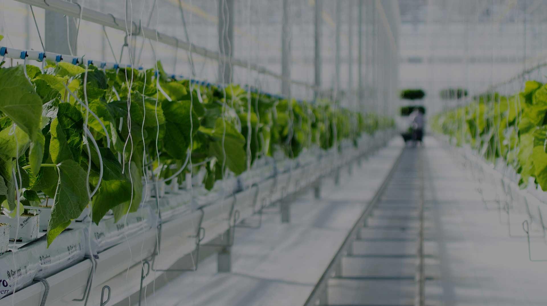 sustainability header new optimized