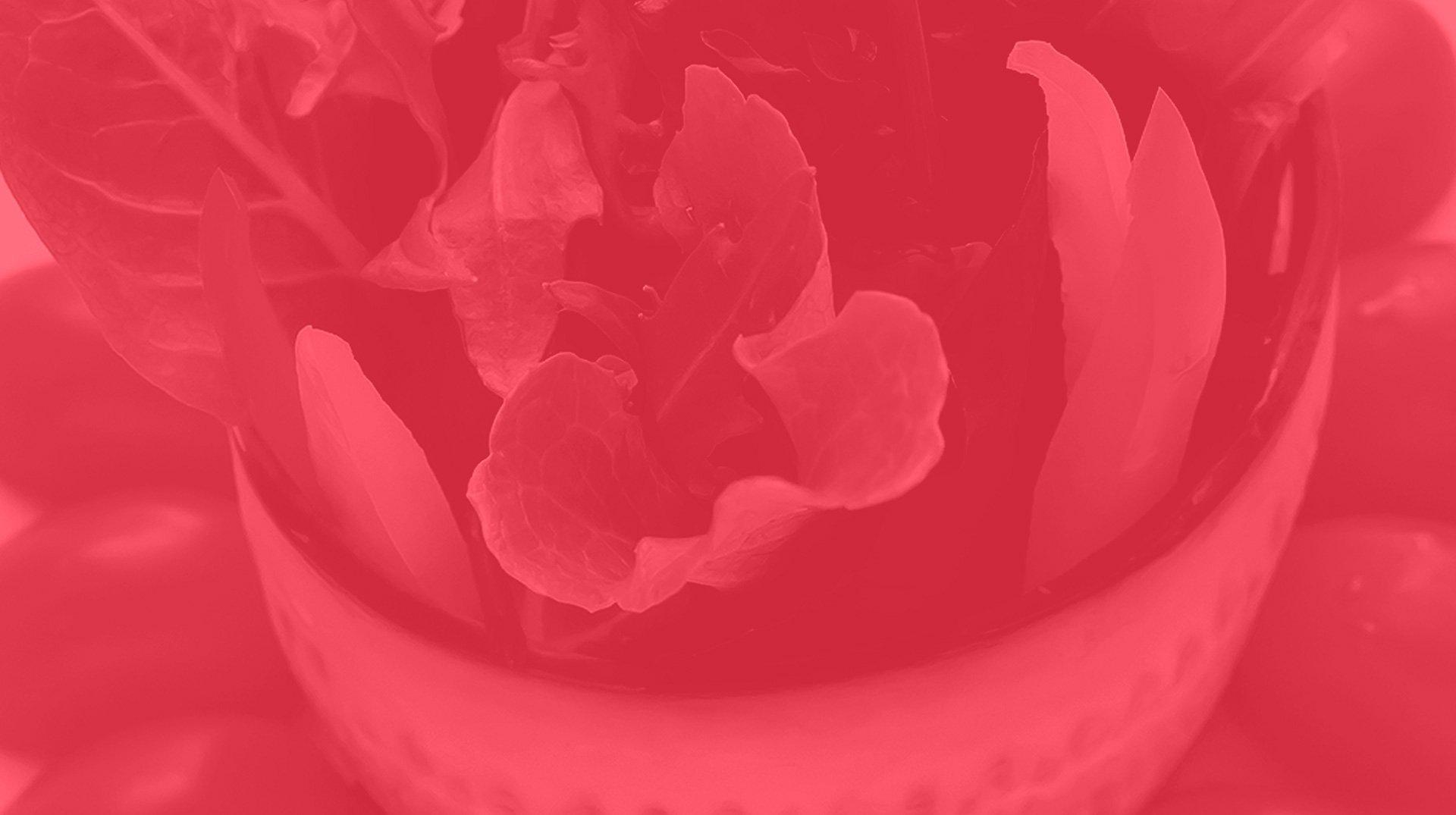 sweet grape header image