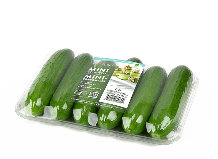 mini cucumbers 6ct clear tray