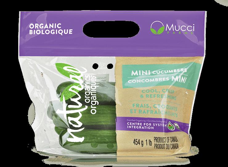 organic mini cuke