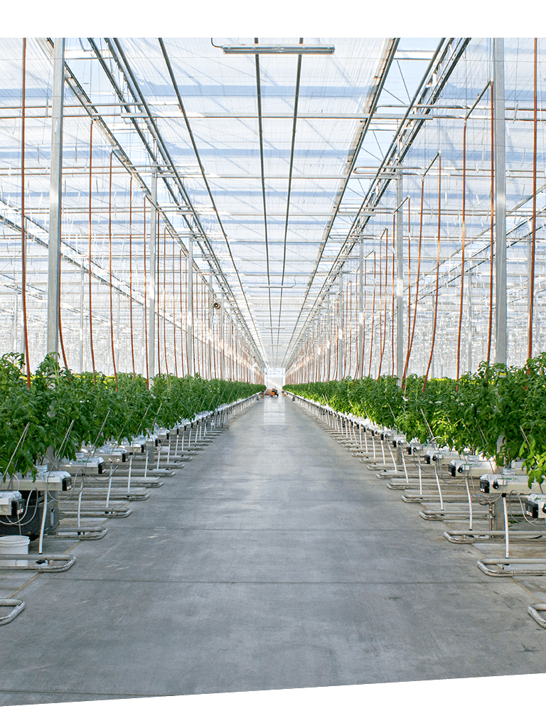why greenhouse grown right image 01 new