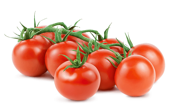 Image%20result%20for%20tomato