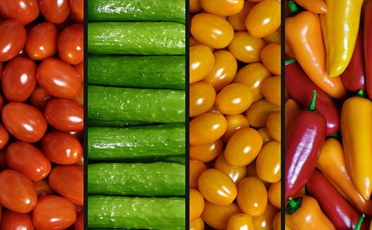 veggies gallery bottom middle
